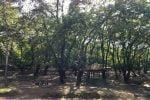پارک جنگی شهید زارع