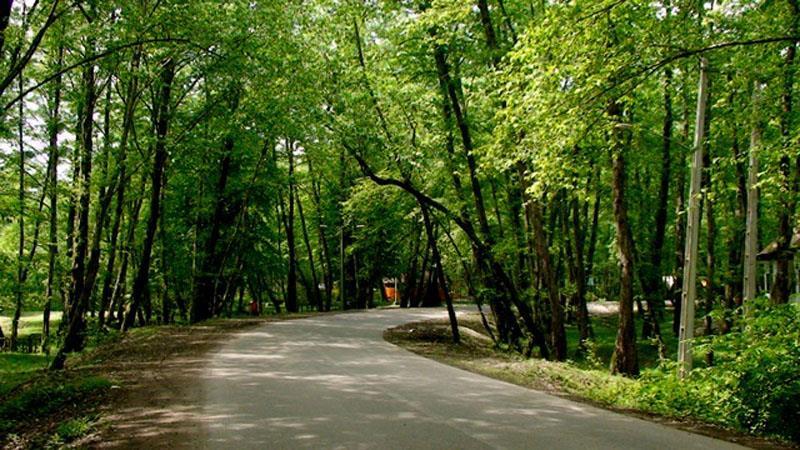 پارک جنگلی وردآورد