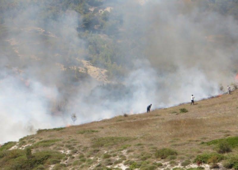 آتش سهل انگاری به 50 هکتار مرتع گلستان خسارت زد