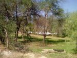 پارک های جنگلی دشتستان