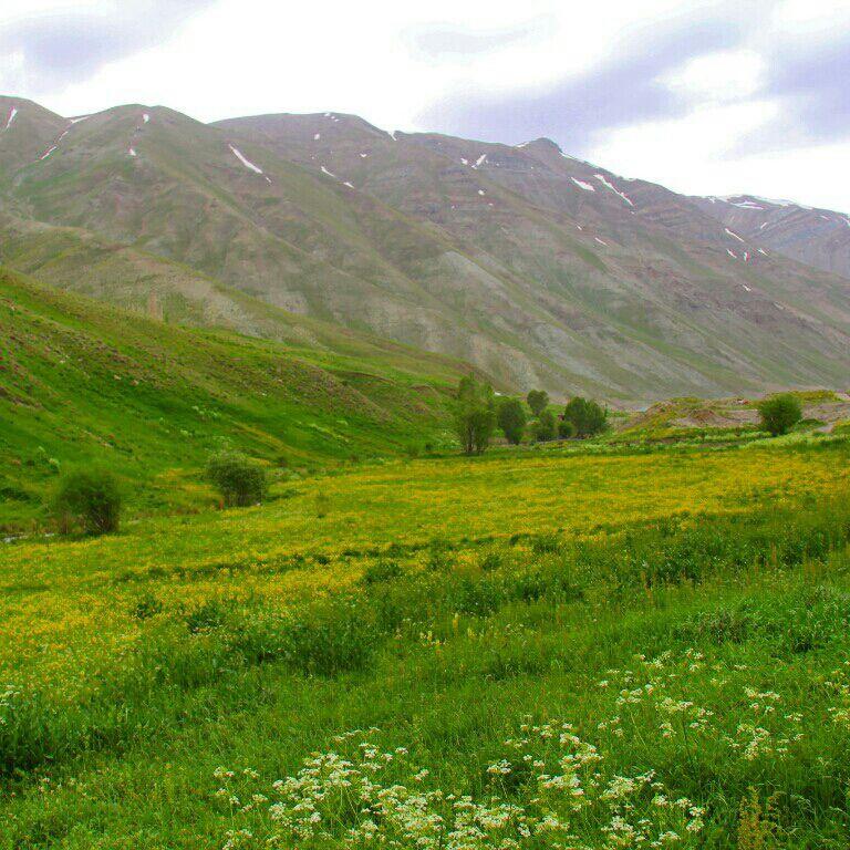روستای هویر