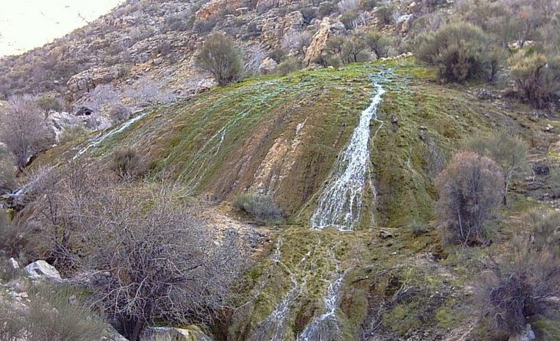 چشمه پلنگان