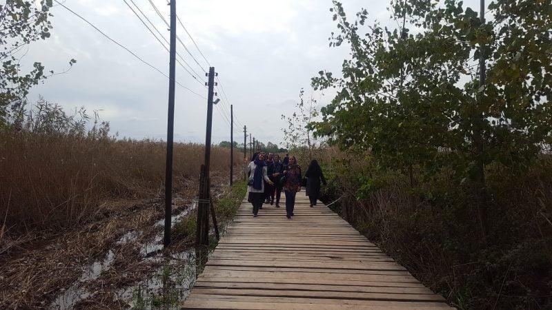 پل چوبی کیاشهر  پل چوبی بندر کیاشهر