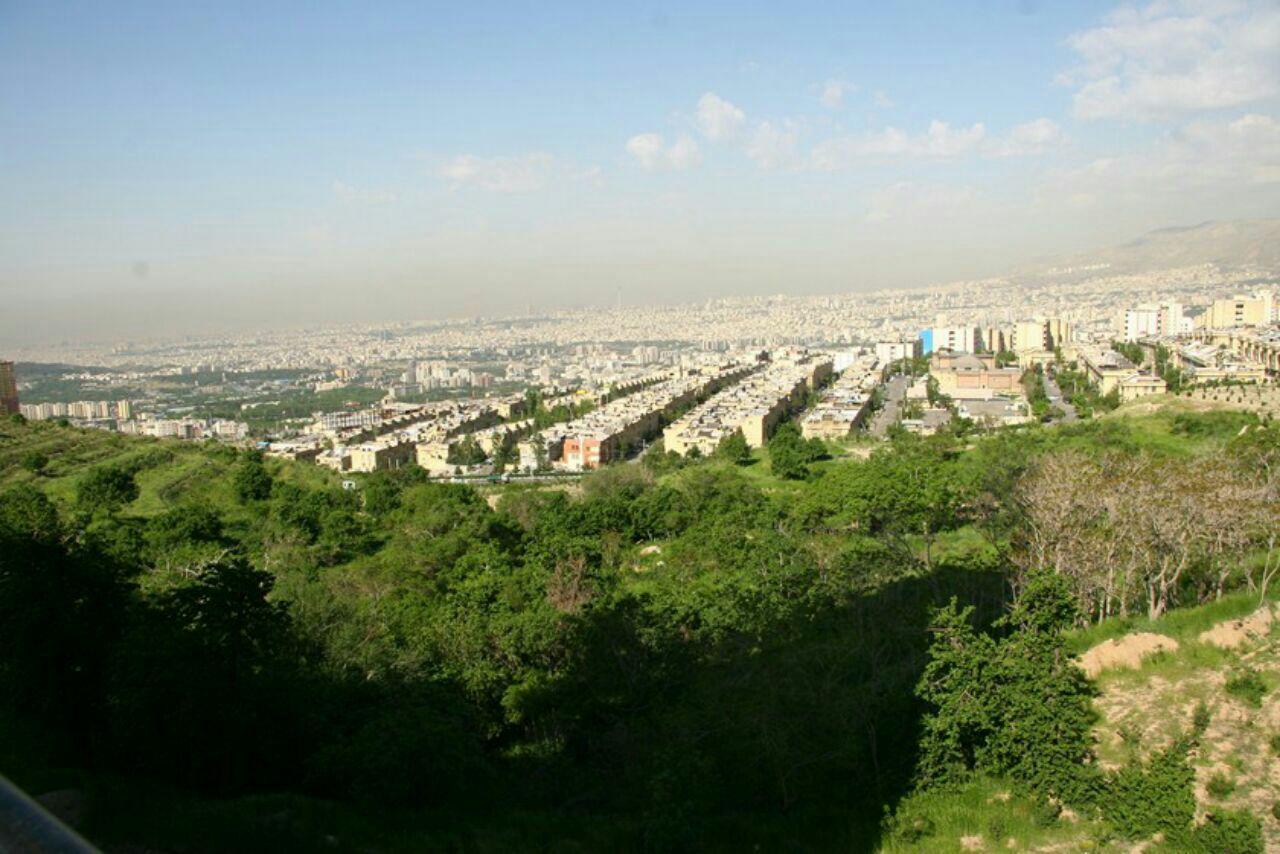پارک جنگلی سوهانک  پارک های جنگلی تهران - 15 پارک با آدرس و عکس