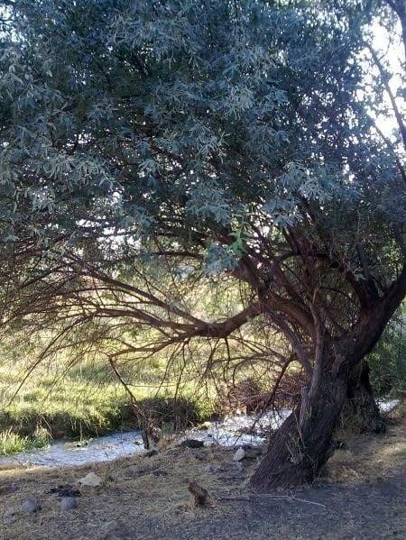 روستای قلعه باباخان