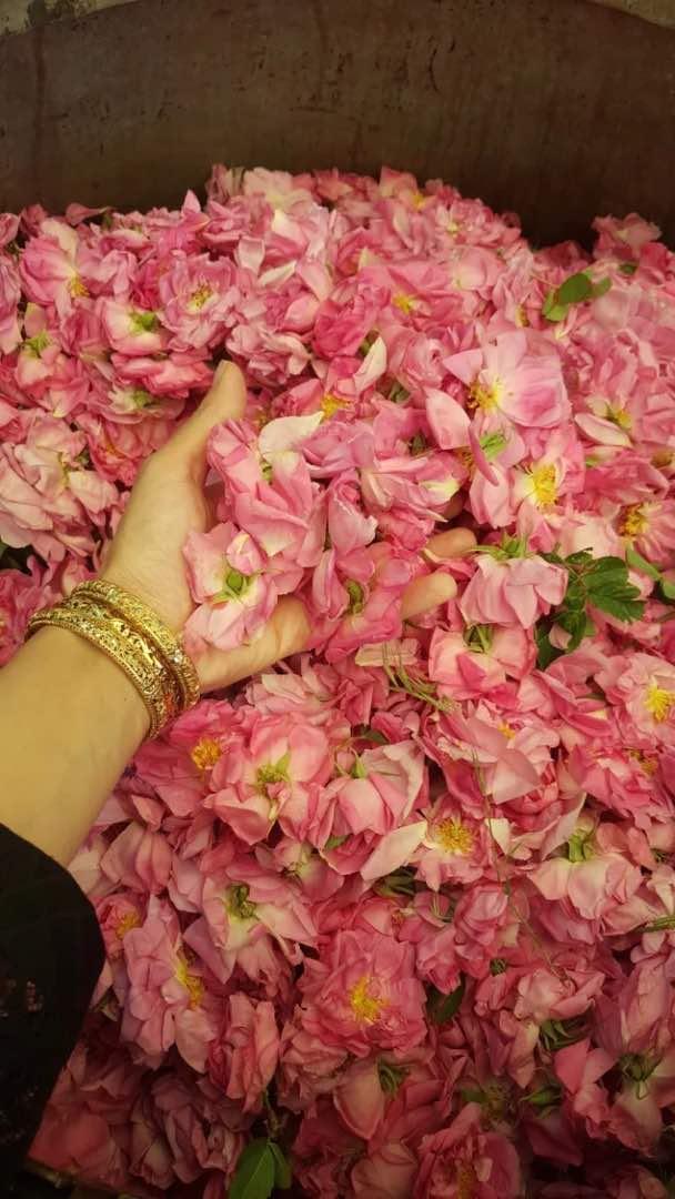 مهمانسرای گل بانو قمصر