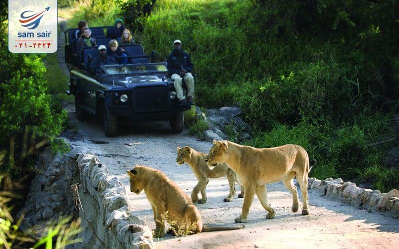 تور آفریقای جنوبی ( 10 واقعیت جالب درباره ژوهانسبورگ )