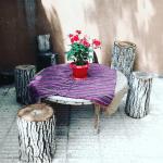 اقامتگاه بومگردی کوچه باغ