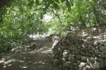 روستای اسپی داران