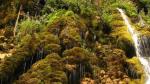 آبشار لاویج نور