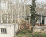 خانه رهنما تهران