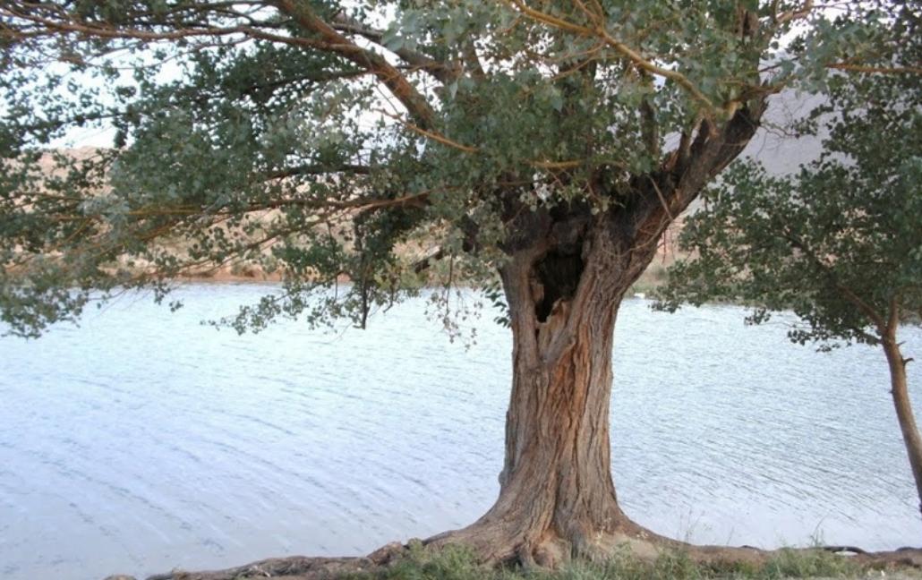 چشمه غربال بیز