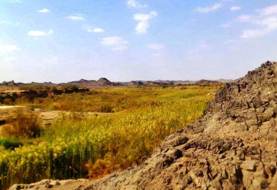 دشت سمسور ايرانشهر