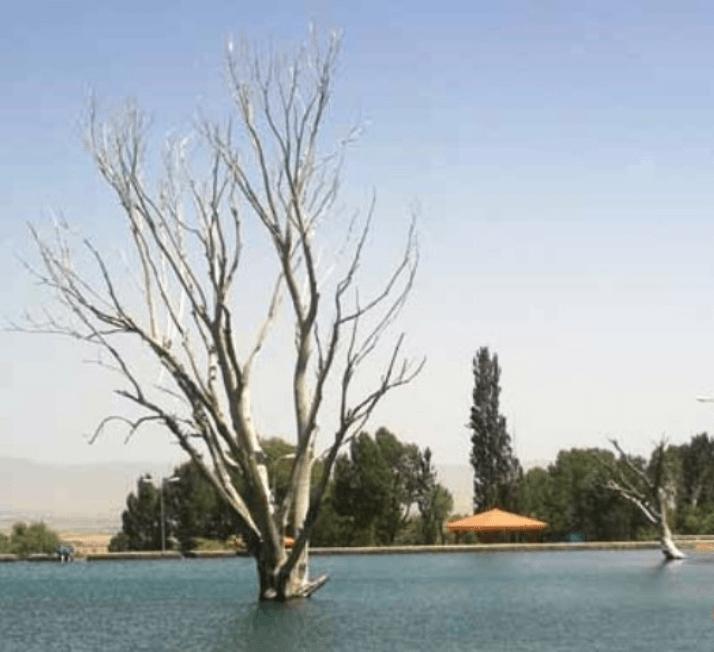 چشمه شاه بلاغی سلطانیه