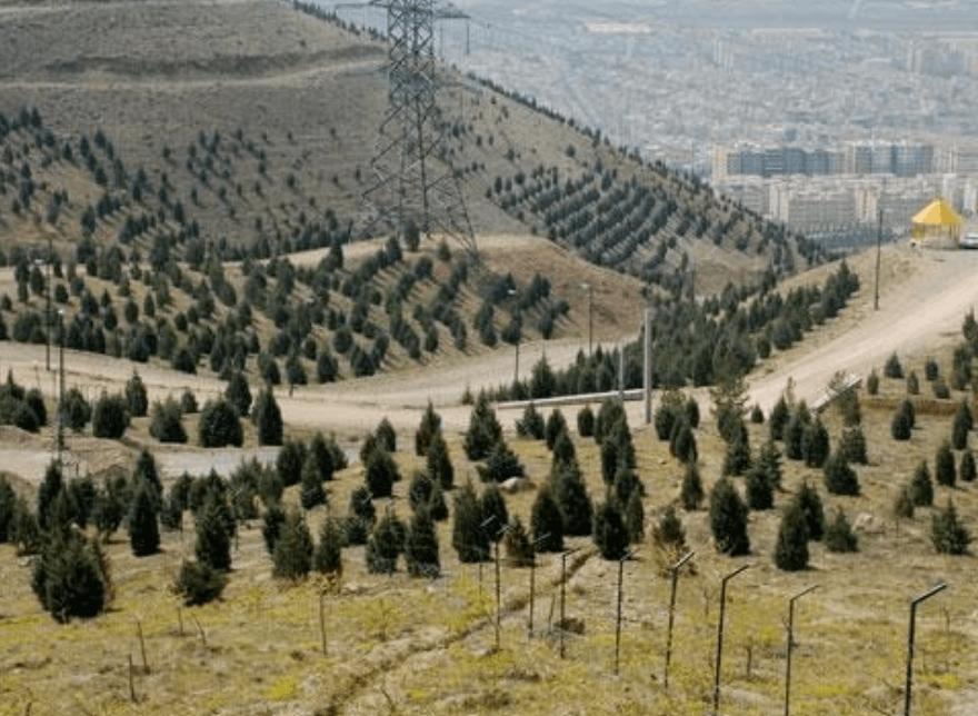 پارک جنگلی لتمان کن