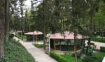 باغ پرندگان بوستان ساعی تهران