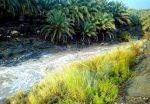 منطقه گردشگری گرگان نیکشهر