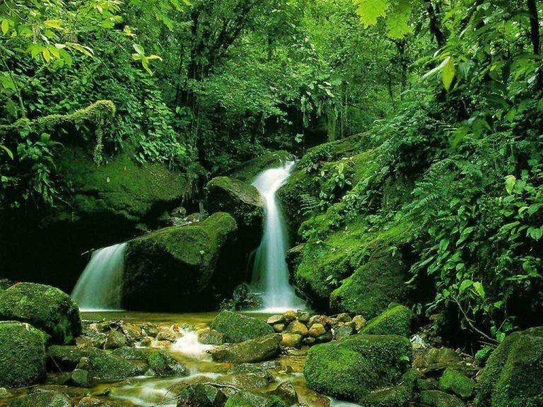 چشمه نیلبرگ