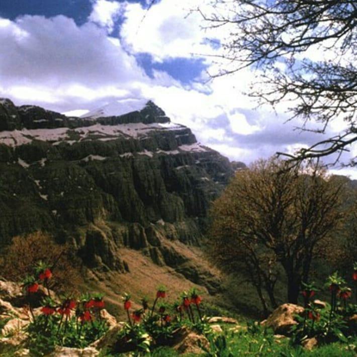 کوه پریز دورود