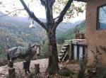 اقامتگاه جنگلی کیدوان سرولات