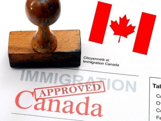 5 اشتباه فاحشی که برای دریافت ویزای مولتی کانادا نباید مرتکب شوید!