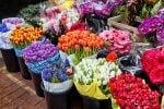 بازار گل شهید محلاتی تهران