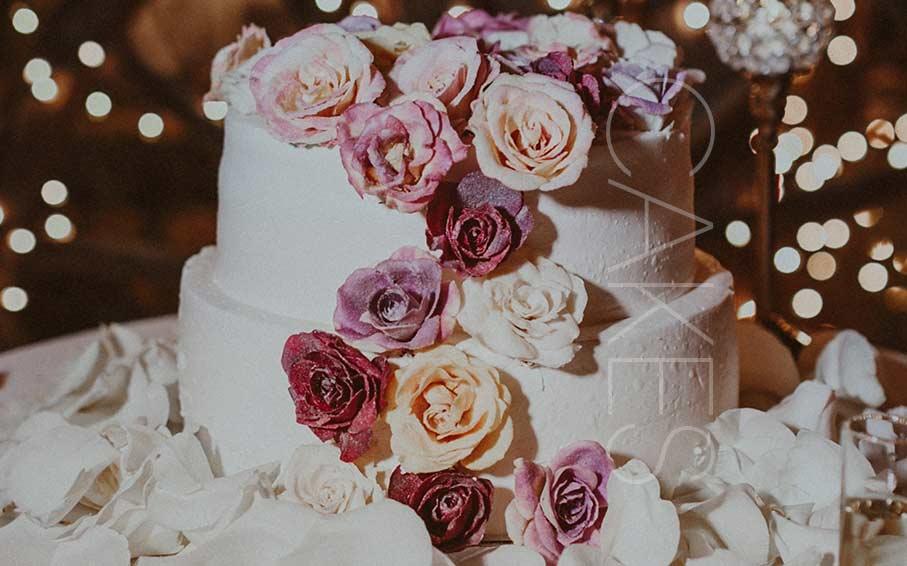 مجتمع شیرینی و کیک ملکا  مجتمع کیک و شیرینی ملکا
