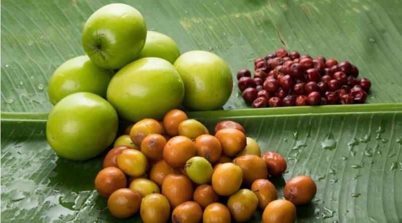 میوه های سیستان و بلوچستان