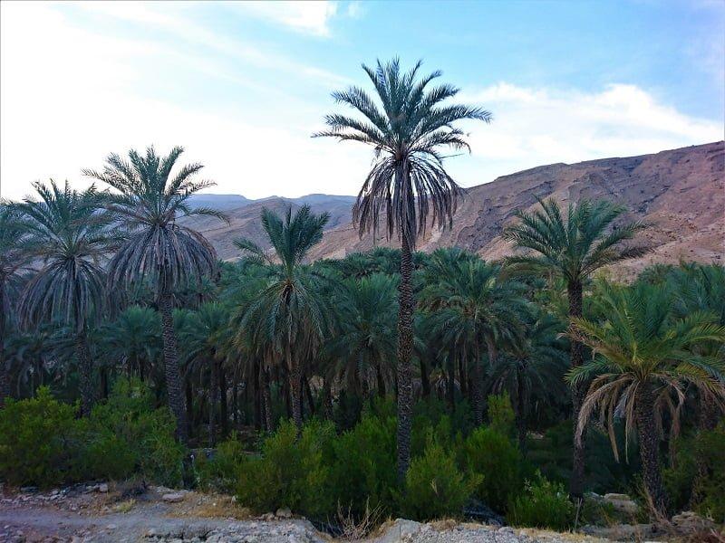 روستای بناب