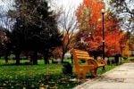 پارک مردم همدان