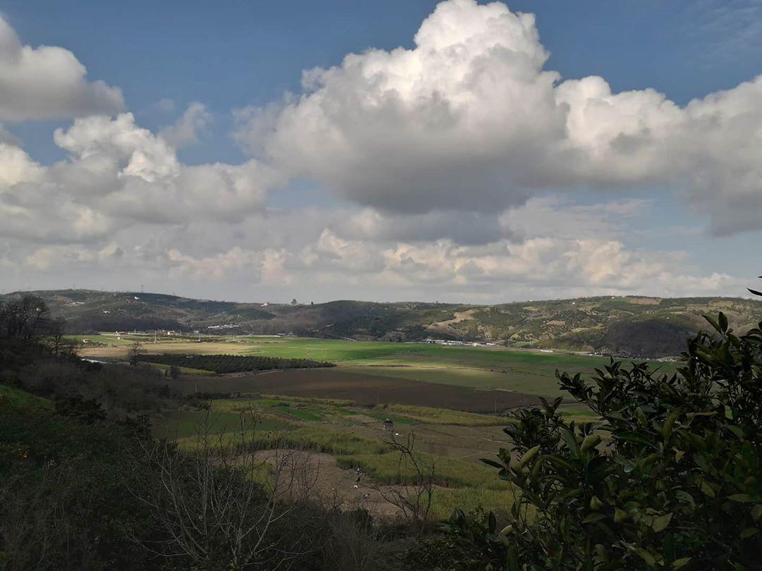 روستای ریکنده روستای ریکنده و کشت نیشکر
