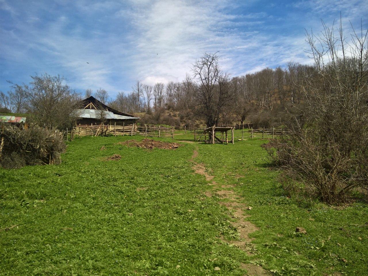 روستای کمر پشت