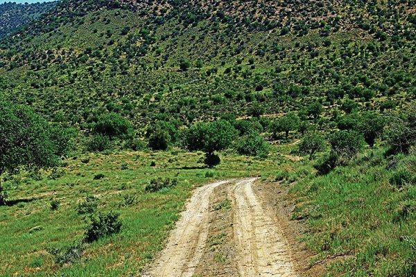 روستای کرخنگان روستای کرخنگان؛ نمونه گردشگری استان یزد