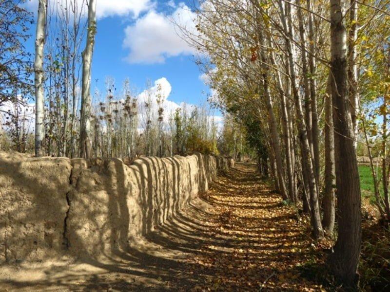 روستای اسفندان کمیجان