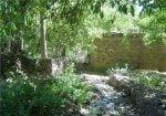 روستای گایکان ، سرزمین لاله های واژگون