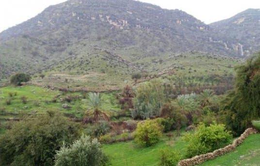 روستای قلعه دژکوه زادگاه هنرمند معروف ایرانی