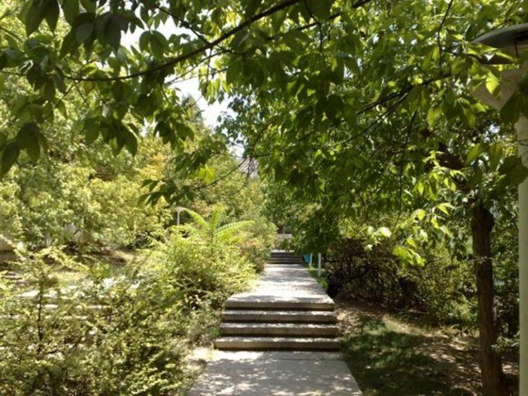 افرا  پارک های جنگلی تهران - 15 پارک با آدرس و عکس