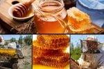 جشنواره ملی عسل در خمین