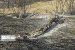 امدادرسانی هلال احمر برای مهار آتشسوزی در خاییز ادامه دارد
