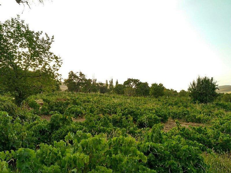 روستای آقبلاغ شهرکرد  روستای آقبلاغ شهرکرد