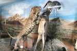 موزه حیات وحش و تاریخ طبیعی سمنان
