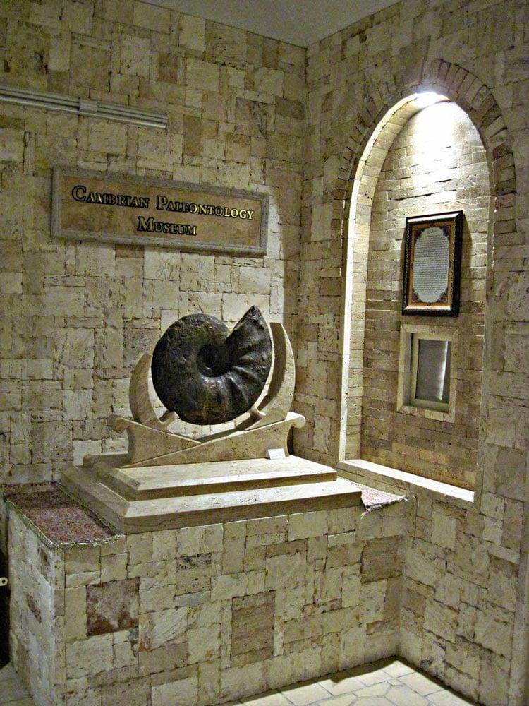 موزه دیرینه شناسی کامبرین،نها موزه دیرینه شناسی کشور  موزه دیرینه شناسی کامبرین
