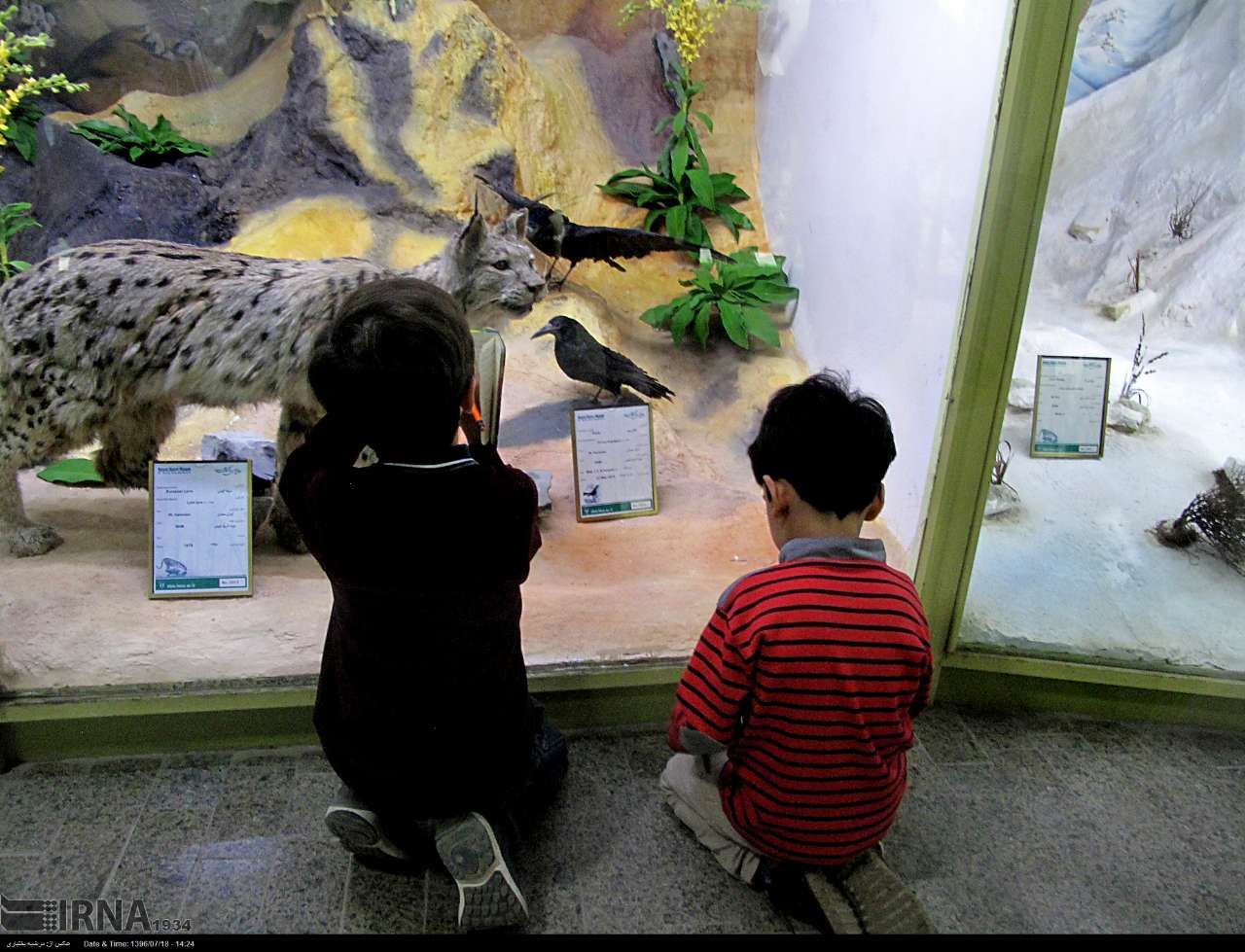 بازدید کودکان از موزه  وضعیت گردشگری کودک و نوجوان در ایران و جهان