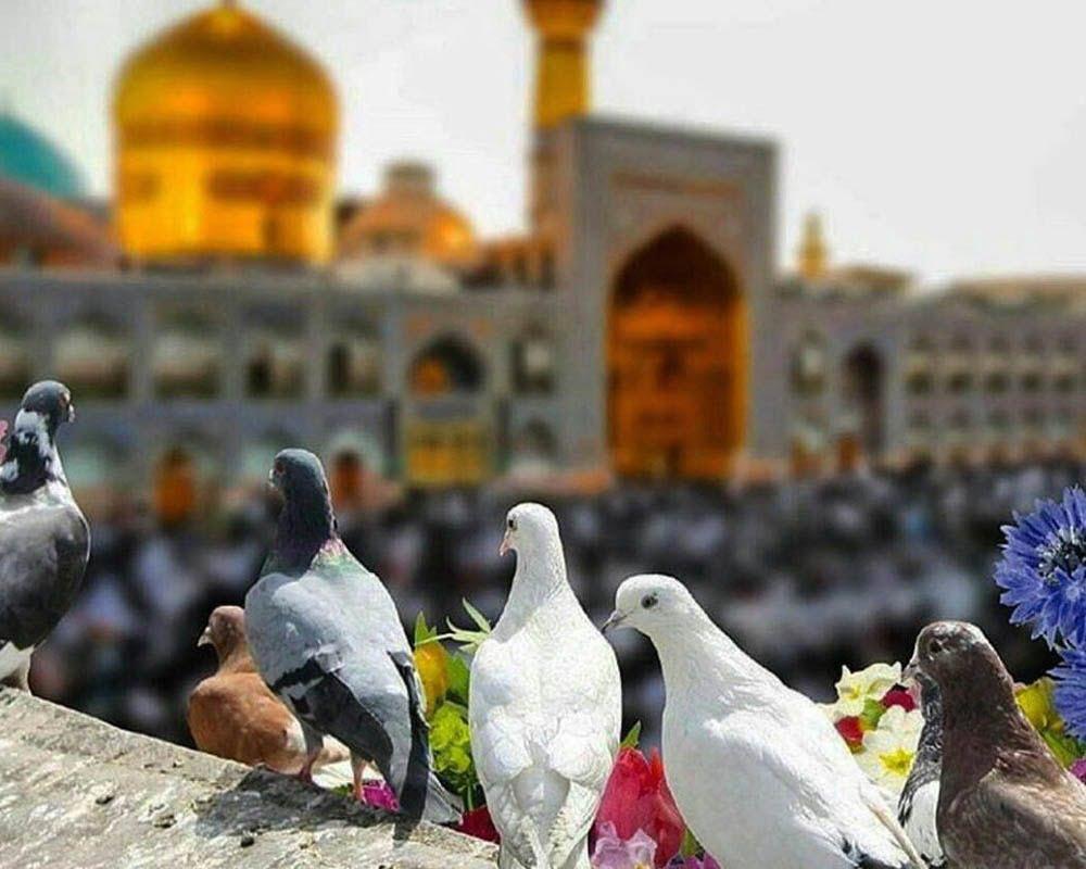 دیدنی های مشهد تب مسافرت تابستانی پساکرونا - تور مشهد