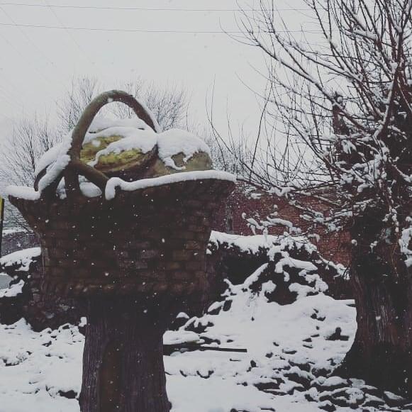 روستای ننوک  روستای ننوک رابر