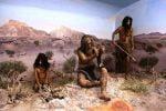 قدیمیترین عضو کشف شده از انسان اولیه در ایران بزودی رونمایی میشود