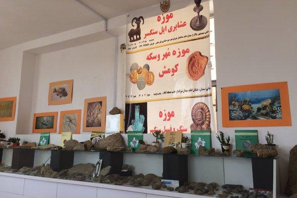 موزه سنگ و فسیل سنگسر