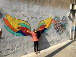 کوچه طوطی پایتخت