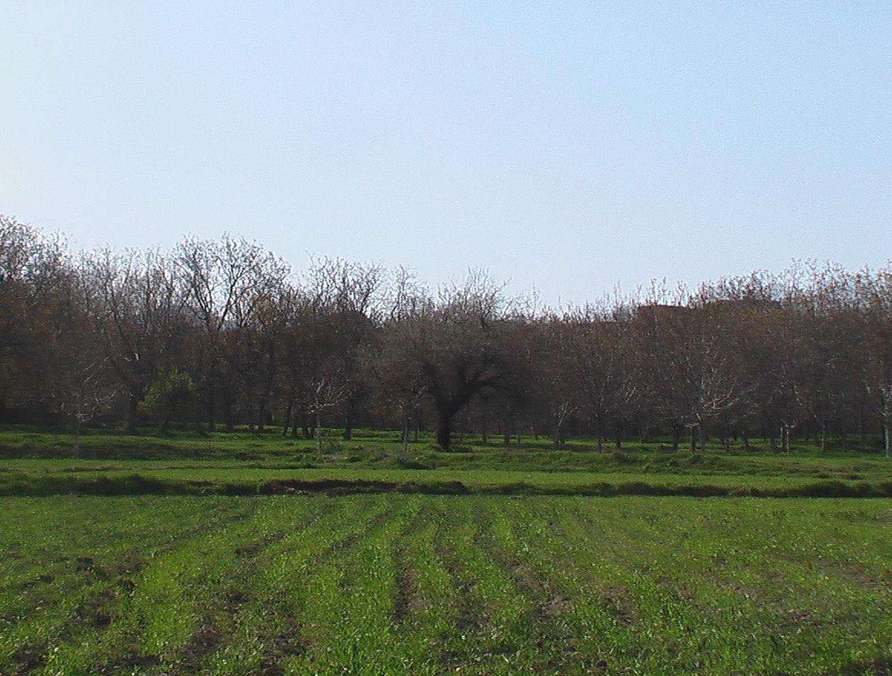 روستای بسنگرد قم