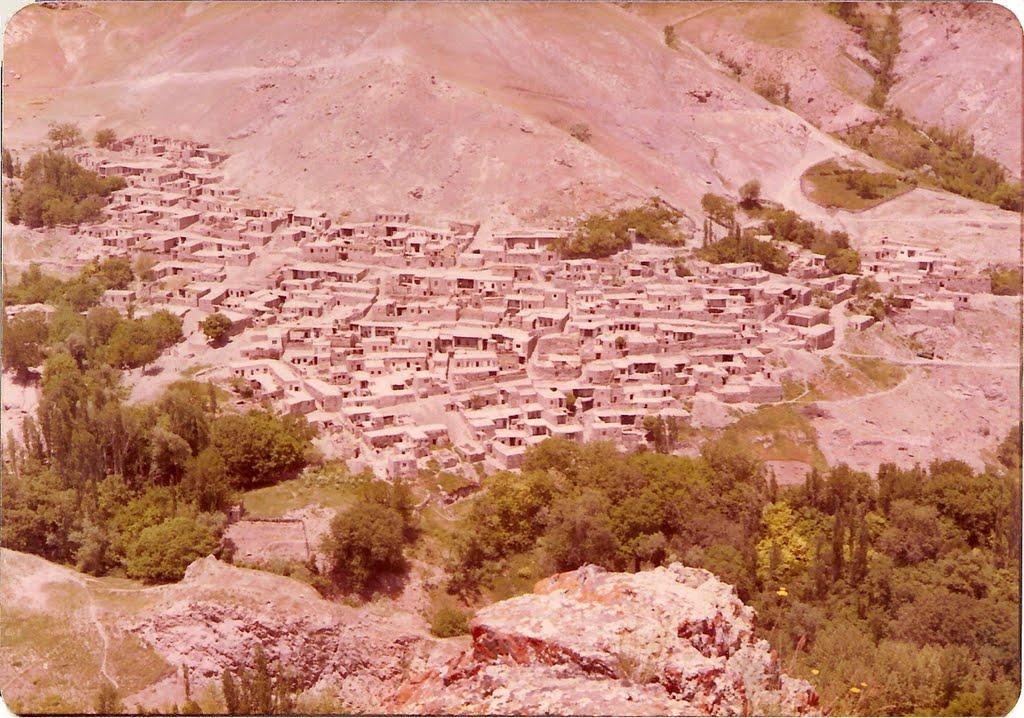 روستای زاجکان علیا